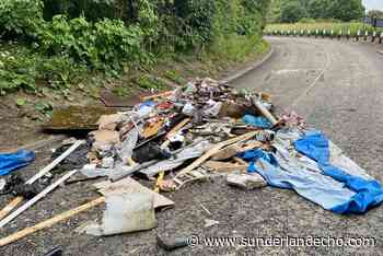 This is the rubbish dumped on a Sunderland road by 'mind-blowingly selfish' flytipper - Sunderland Echo