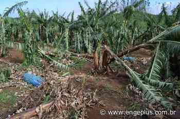 Ventos fortes deixam rastro de destruição em Jacinto Machado - Engeplus