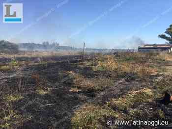 Vasto incendio a Olmobello: protezione civile e polizia locale al lavoro - latinaoggi.eu