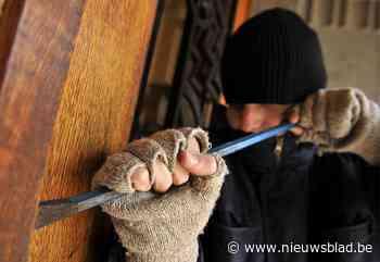 Dieven slaan op de vlucht bij inbraak in Neerpelt