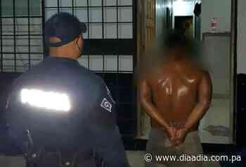 Detienen a hombre que estranguló a dos perros en Cañazas - Día a día