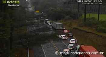 Quedas de árvores interditam pontos da BR-116 em Monte Castelo, Lages e Itaiópolis - Mobilidade Floripa
