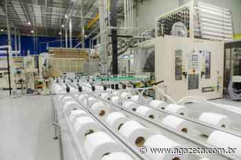 Suzano adia início da operação de fábrica de papel no ES - A Gazeta