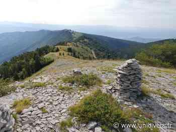 Sur le chemin des plantes de la Montagne de Lure Montagne de Lure Saint-Étienne-les-Orgues - Unidivers