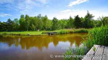 Loon-Plage : comment va rouvrir le Parc Galamé le 4 juillet - Le Phare dunkerquois