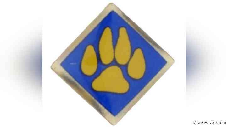 Boy Scouts recall scout pins that contain high levels of lead