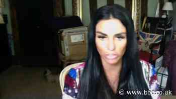 Katie Price calls for penalties for online abuse
