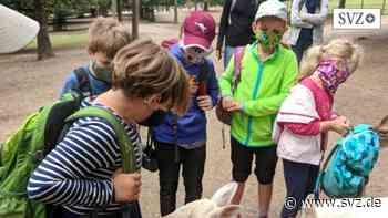 Boizenburg: Ein wilder Ausflug für Kinder | svz.de - svz.de
