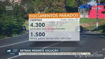 Covid-19: Detran-SP acumula 5,8 mil documentos de Campinas parados por conta da pandemia - G1
