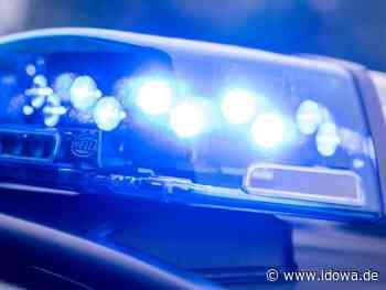 Mittenwald: Greta-Zöpfe hängen aus Kofferraum - Satire wird teuer - idowa
