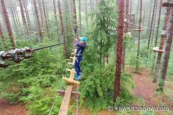 Treetop Trekking is open again in the Ganaraska Forest near Port Hope - kawarthaNOW.com