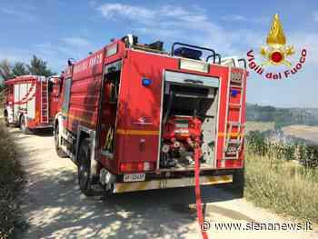 Poggibonsi: incendio in un campo di grano, ettari in fiamme - Siena News