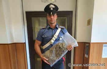 Poggibonsi Droga Carabinier Marijuana Donna Tramonti - Valdelsa.net