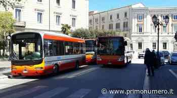 """Bus, sindaco di Campobasso a Toma: """"Contagio rassicurante, via limiti"""" - Primonumero"""