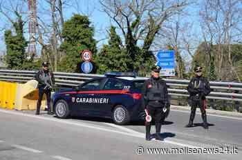 Campobasso, detenzione ai fini di spaccio: identificato pusher 22enne - Molise News 24