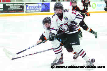 Red Deer Minor Hockey encouraged by Hockey Alberta's Return to Play plan - Red Deer Advocate