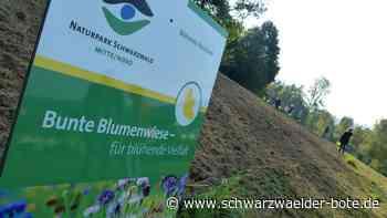 Freudenstadt: Wo der Naturpark besonders blüht - Freudenstadt - Schwarzwälder Bote