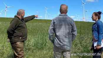 Protest in Blankenburg: Kritiker fordern neue Abstandsregeln für Windräder - Nordkurier