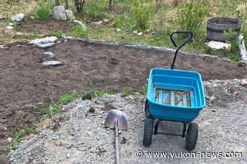 Local gardener asks for return of wagons - Yukon News