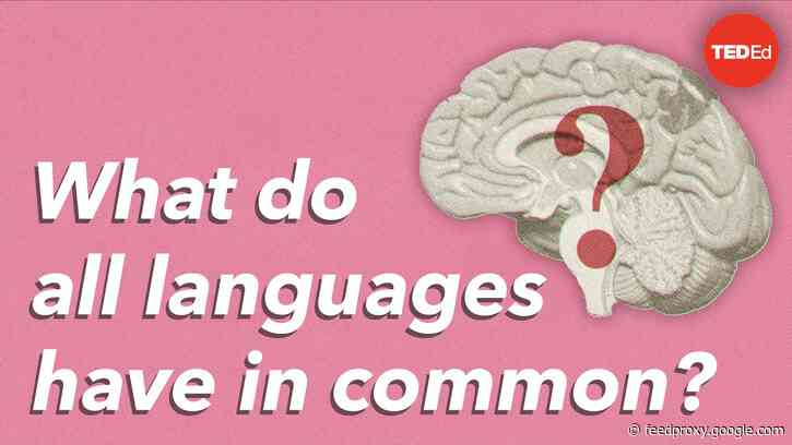 An Animated Introduction to Noam Chomsky's Groundbreaking Linguistic Theories