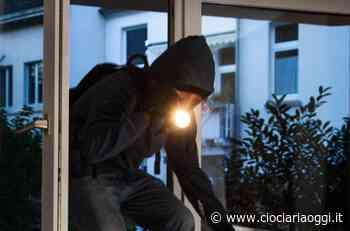 Furto nella notte: i ladri portano via 5.000 euro di... motoseghe - ciociariaoggi.it