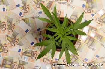 PEZENAS - Deux hommes poursuivis pour avoir importé depuis Barcelone 6 400 grammes d'herbe de cannabis - Hérault-Tribune
