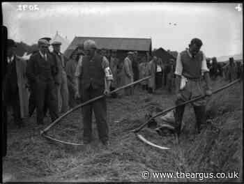 Amazing photos show a bygone era of Sussex farming