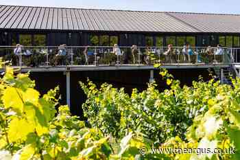 Raise your glass – vineyards are ready to welcome you