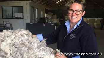Wool growers weigh up whether to sell or keep the clip