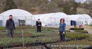 Centre to create a nature lover's Highland paradise - HeraldScotland