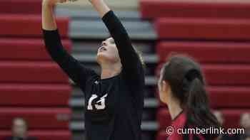 HS Girls Volleyball: Cleaning, spacing, small-group workouts focus for Cumberland Valley in attempt to mitigate risk - The Sentinel