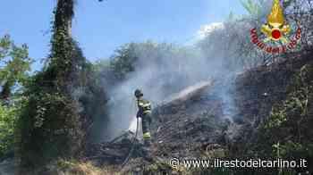 Incendio Monte San Vito, fiamme accanto alla strada - il Resto del Carlino
