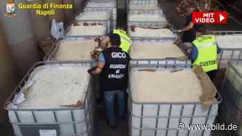 Fahnder finden riesige Drogen-Lieferung – Wert: Eine Milliarde! - BILD