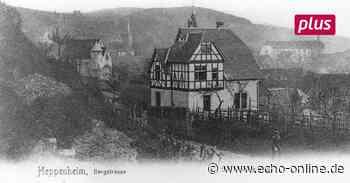 Alte Ansicht von Heppenheim taucht wieder auf - Echo-online