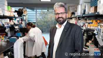 Regina-born scientist leading the search for a COVID-19 treatment - CTV News