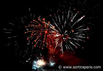 Feu d'artifice du 14 juillet 2020 à Villeparisis (77) - sortiraparis