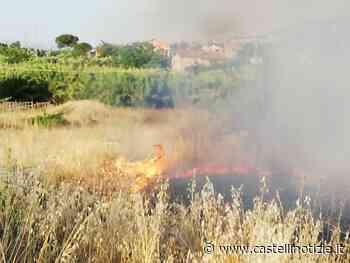 Ciampino, vasto incendio in un campo di sterpaglie in via Morosina - Castelli Notizie