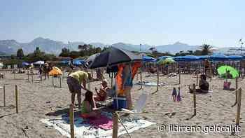 Due turni per stare in spiaggia a Marina di Carrara e ok all'accesso per i cani - Il Tirreno