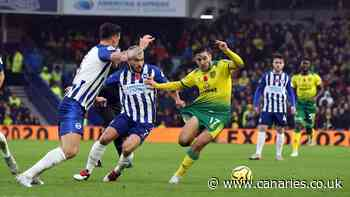 Match Preview: Norwich City v Brighton & Hove Albion