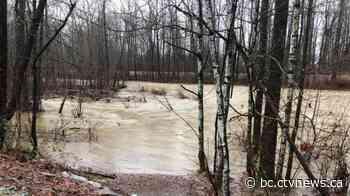 High streamflow advisory issued for part of the Fraser River - CTV News