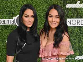 Bella Twins seeking prayers as mother undergoes brain surgery - High River Times