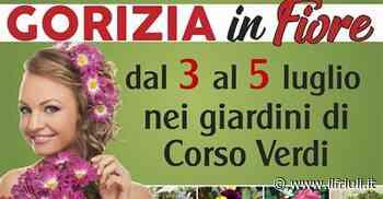 Tutto pronto per Gorizia in fiore - Il Friuli