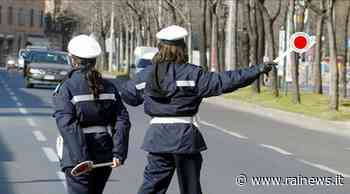 Organizza viaggi abusivi, la Polizia Locale di Gorizia blocca il pullman - TGR Friuli Venezia Giulia - TGR – Rai
