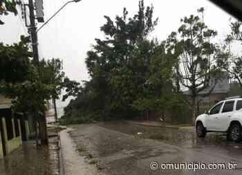 99% dos consumidores do Vale do Rio Tijucas estão sem energia elétrica - O Munícipio