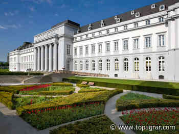 Klöckner lädt EU-Kollegen aufs Kurfürstliche Schloss und ins Weindorf nach Koblenz ein - top agrar online