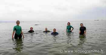 L'Aquagym, c'est aussi en mer - Le Télégramme