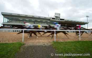 Horse Racing Tips: Timeform's 3 best bets at Wolverhampton on Friday - Paddy Power News