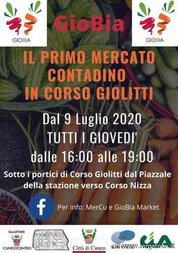 Cuneo, mercato contadino Gio.B.i.A. in corso Giolitti - TargatoCn.it