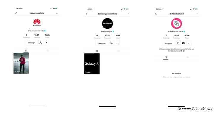 TikTok Strategien von Marken: Fokus auf Kampagnen oder  regelmäßiges Publishing