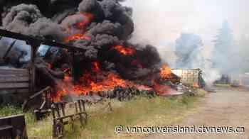 Several barns destroyed in massive blaze near Courtenay - CTV News